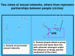 two views of sexual networks where lines represent partnerships between people circles