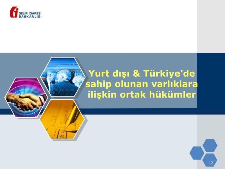 Yurt dışı & Türkiye'de sahip olunan varlıklara ilişkin ortak hükümler