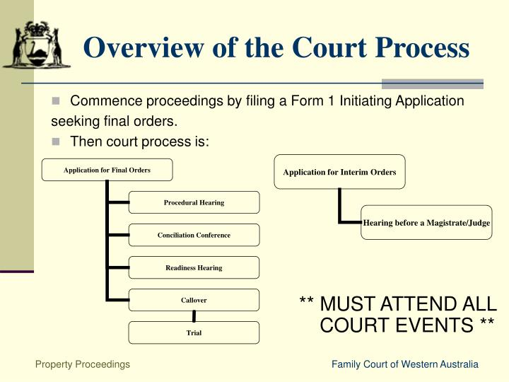 Overview of the Court Process