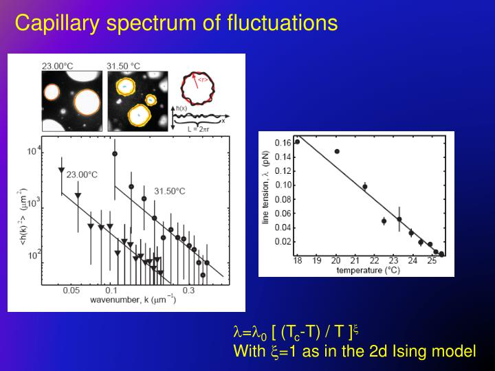 Capillary spectrum of fluctuations