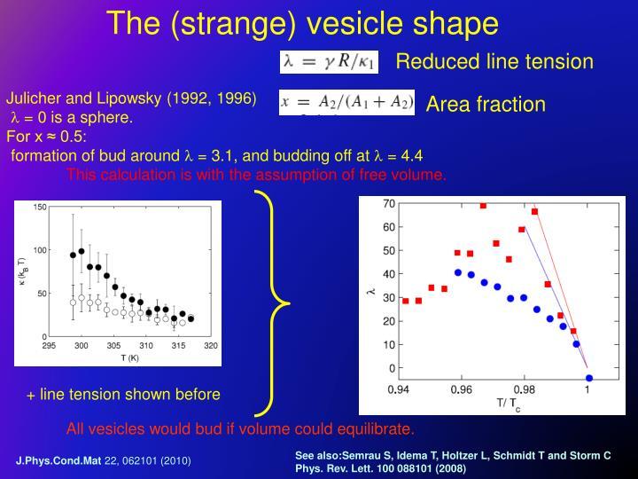 The (strange) vesicle shape