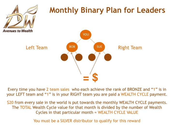 Monthly Binary Plan for Leaders