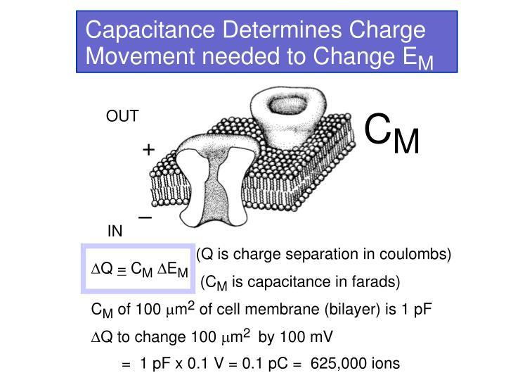 Membrane Capacitance