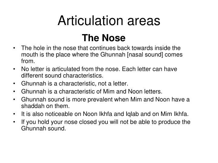 Articulation areas