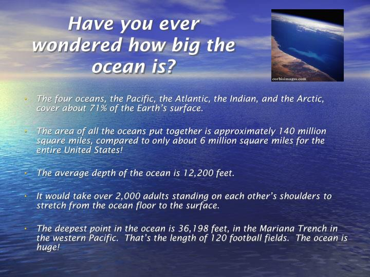 Have you ever wondered how big the ocean is?