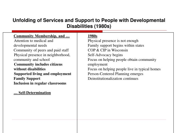 Unfolding of Services and Support to People with Developmental Disabilities (1980s)