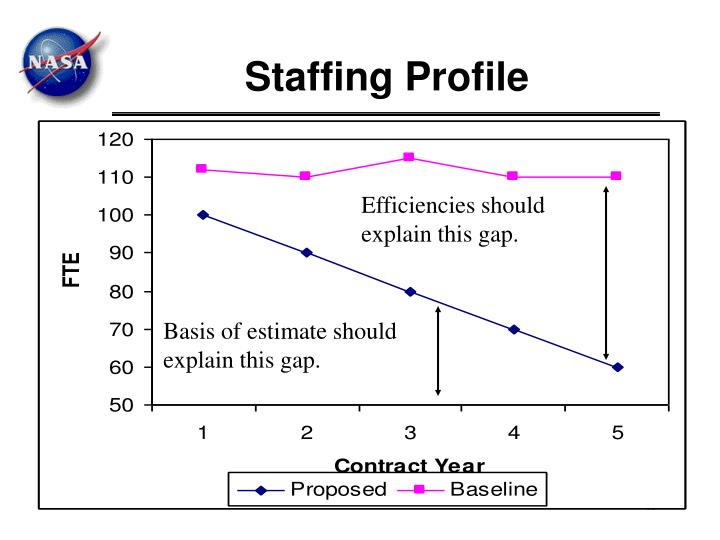 Staffing Profile