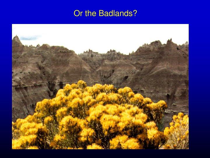 Or the Badlands?
