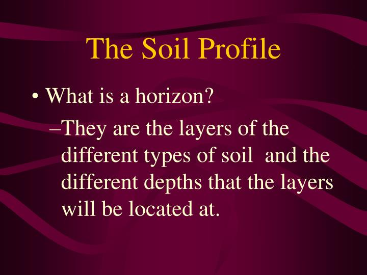 The Soil Profile