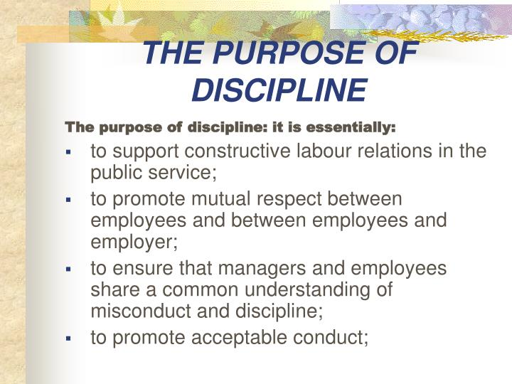 THE PURPOSE OF DISCIPLINE