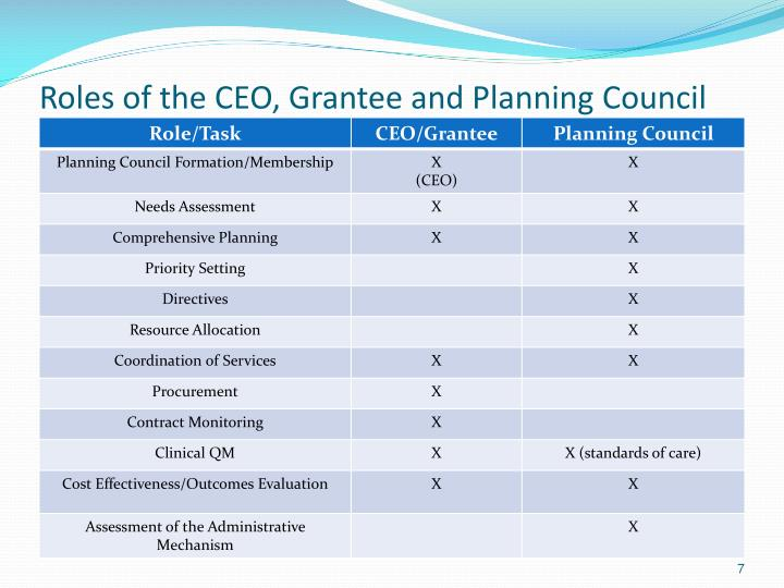 Roles of the CEO, Grantee and Planning Council