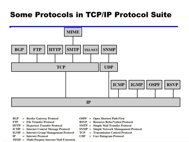 Some Protocols in TCP/IP