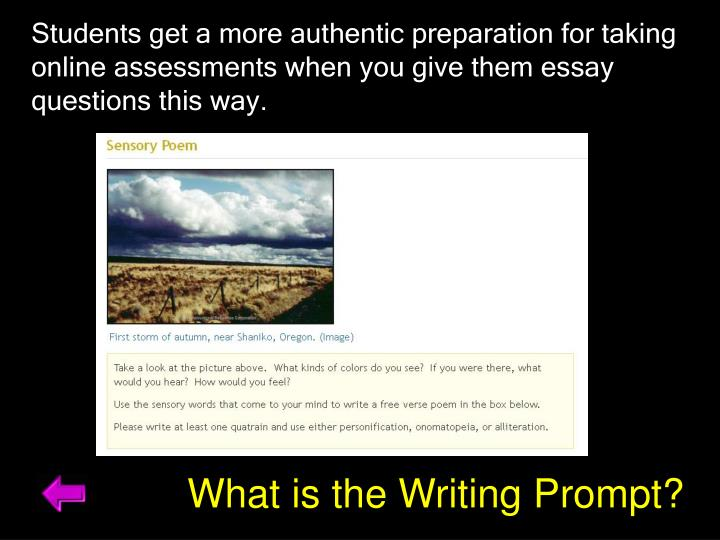 Students get a more authentic preparation for taking online assessments when you give them essay questions this way.
