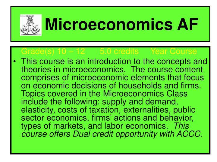 Microeconomics AF
