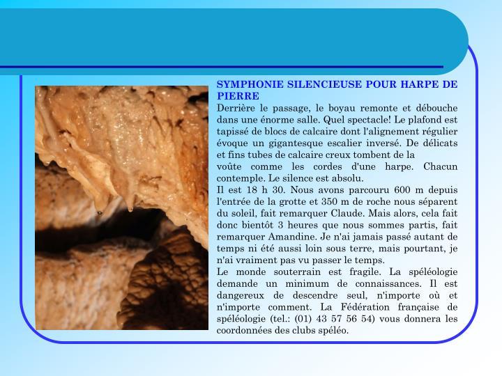 SYMPHONIE SILENCIEUSE POUR HARPE DE PIERRE