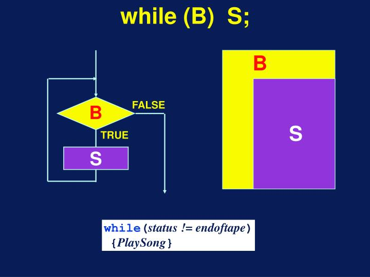 while (B)  S;
