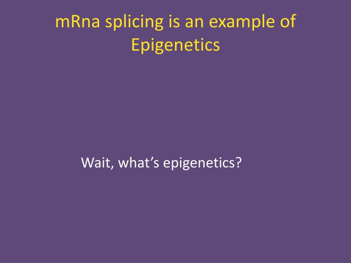 mRna splicing is an example of Epigenetics