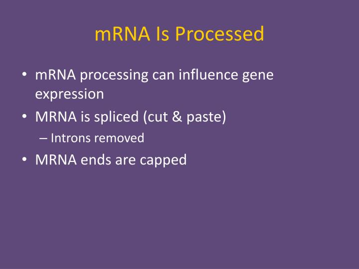 mRNA Is Processed