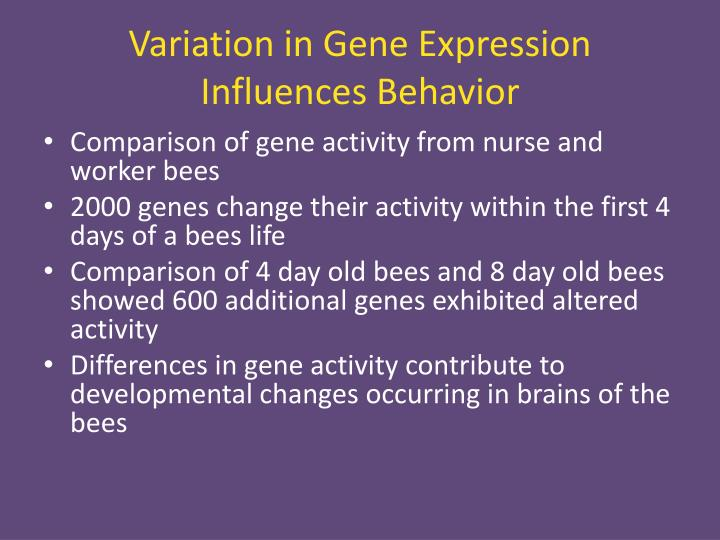 Variation in Gene Expression Influences Behavior