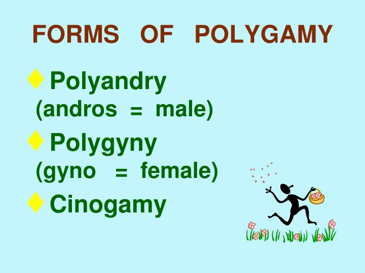 FORMS   OF   POLYGAMY