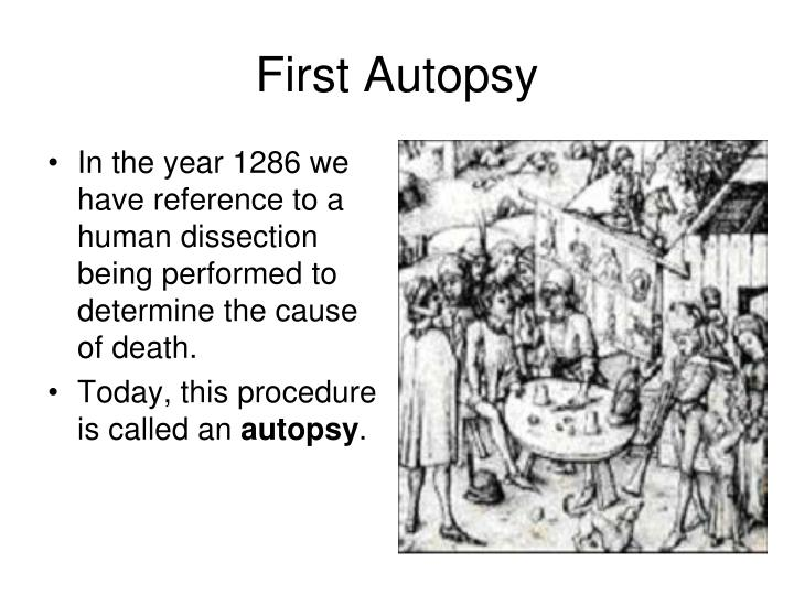 First Autopsy