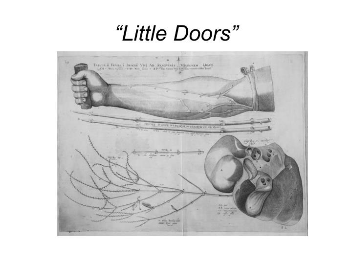 """Little Doors"""