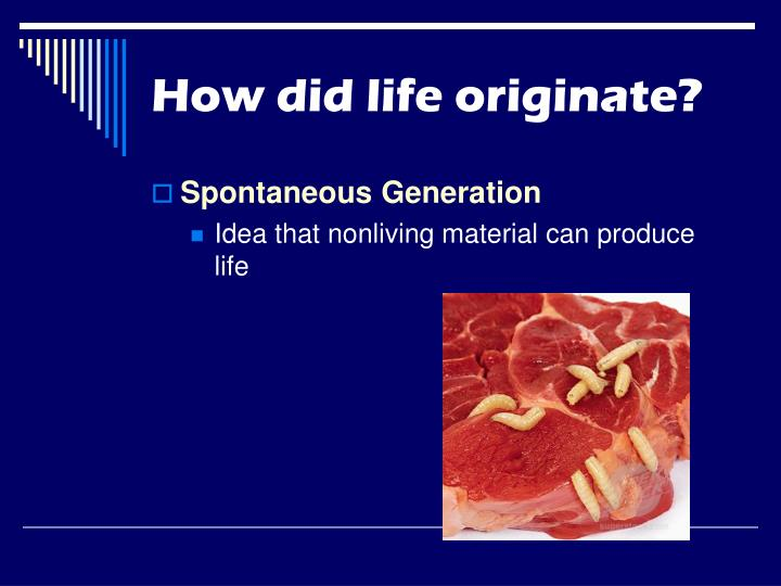 How did life originate?