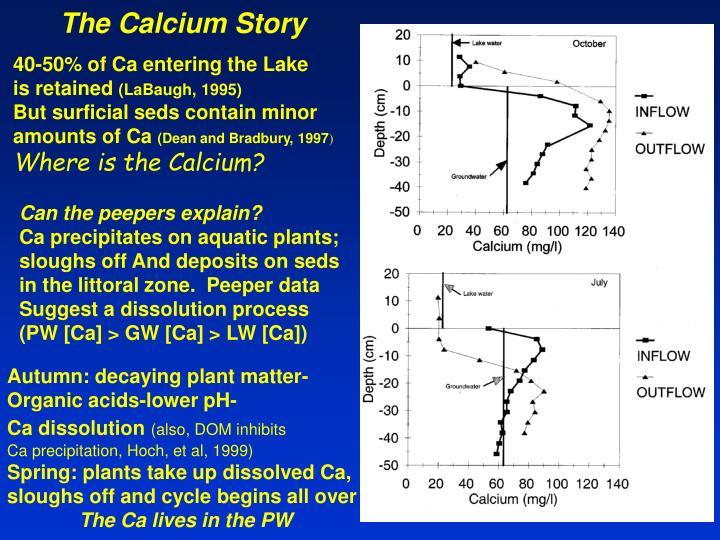 The Calcium Story