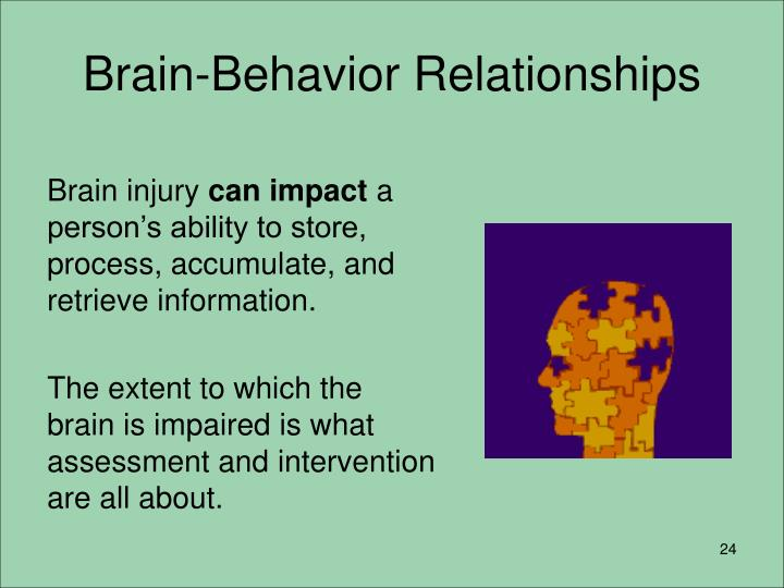 Brain-Behavior Relationships