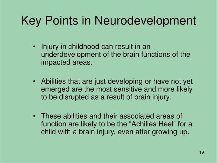 Key Points in Neurodevelopment