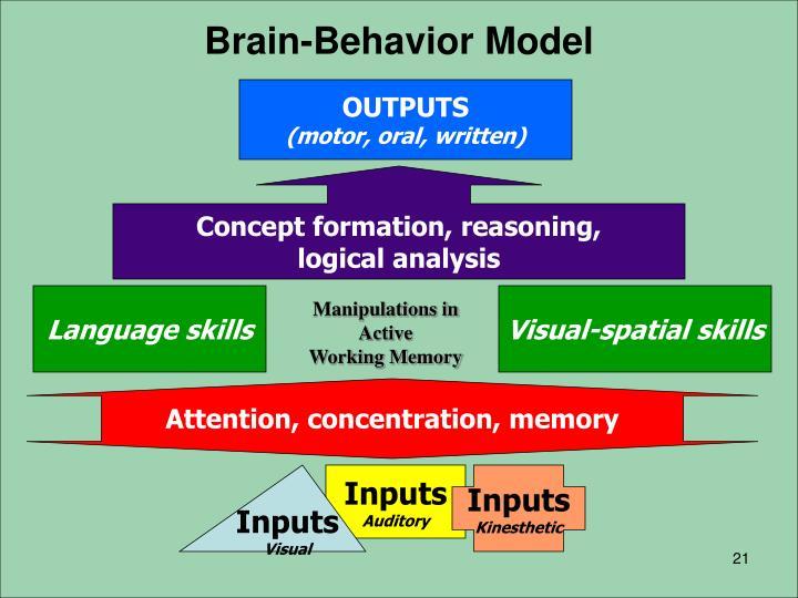 Brain-Behavior Model