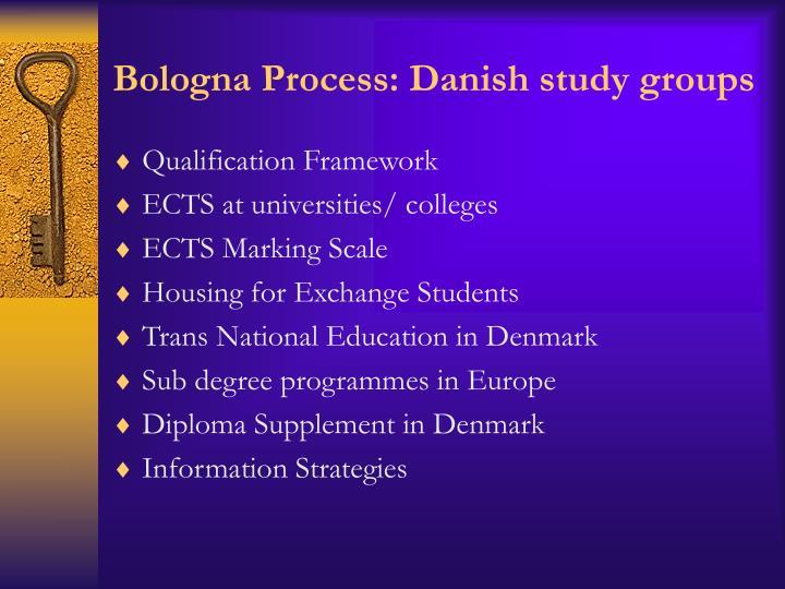 Bologna Process: Danish study groups
