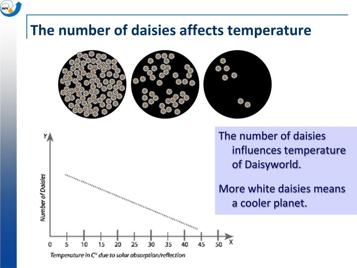 The number of daisies influences temperature of