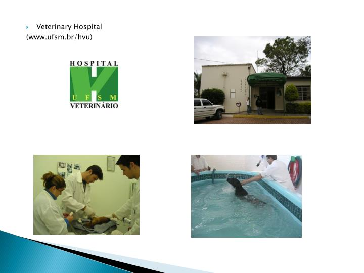 Veterinary Hospital