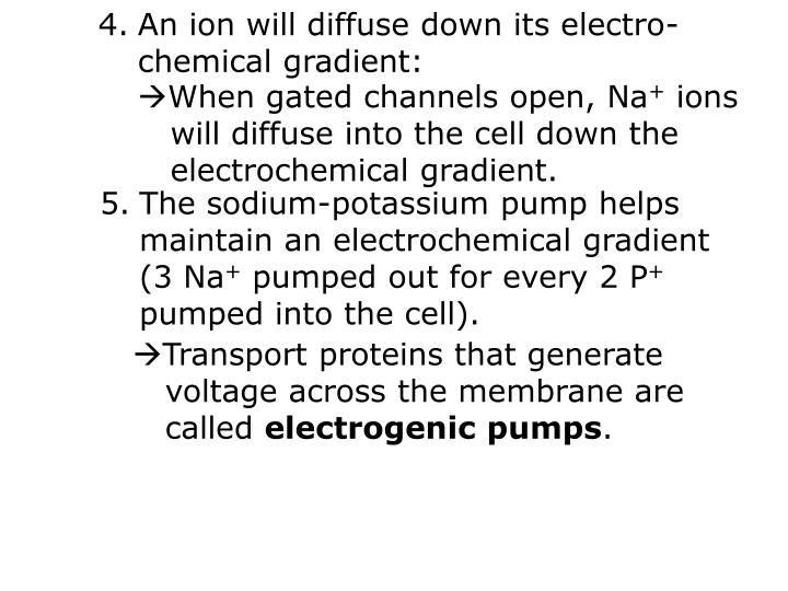 An ion will diffuse down its electro-