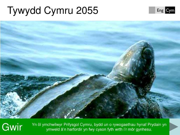 Tywydd Cymru 2055