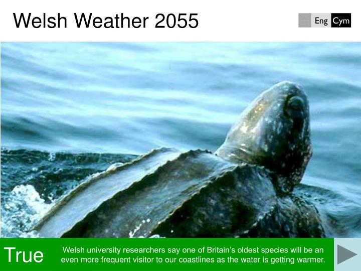 Welsh Weather 2055