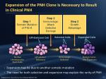 expansion of the pnh clone is necessary to result in clinical pnh