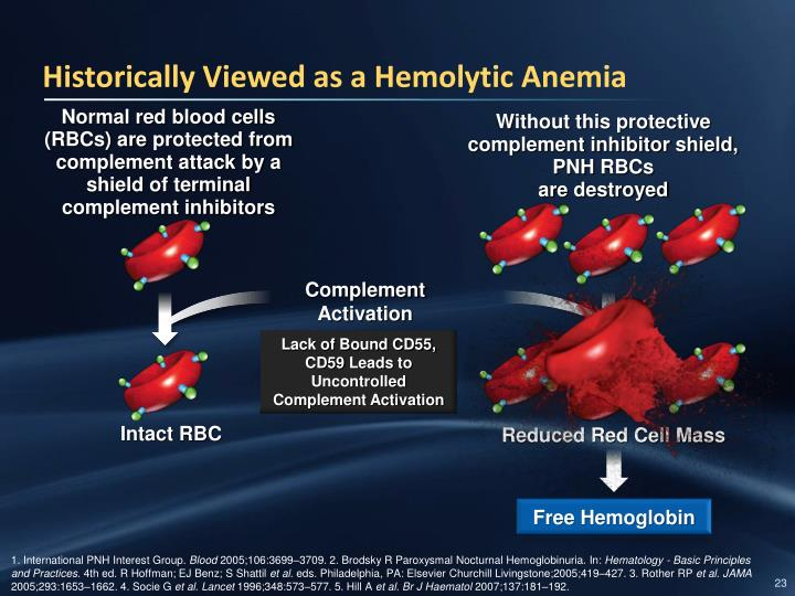 Historically Viewed as a Hemolytic Anemia