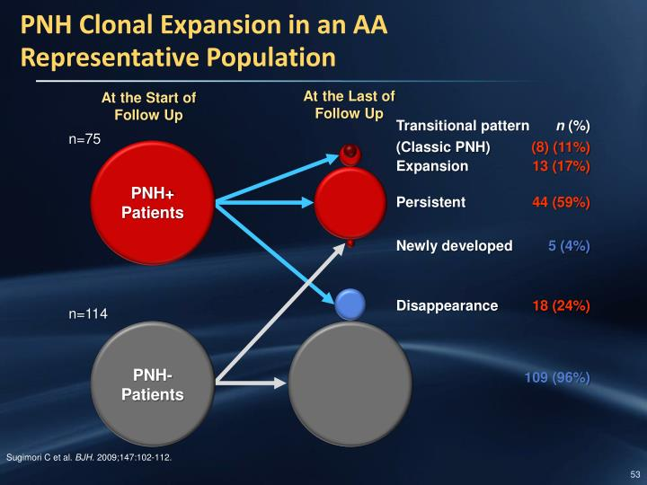 PNH Clonal Expansion in an AA
