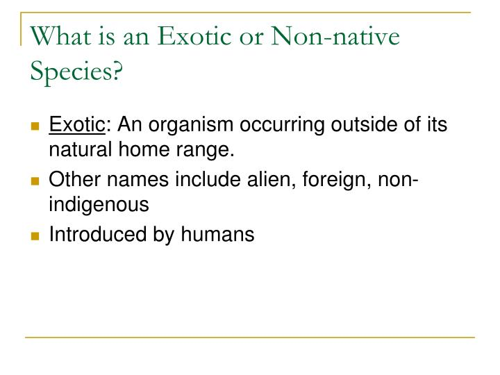 What is an Exotic or Non-native Species?