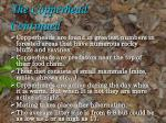 the copperhead continued