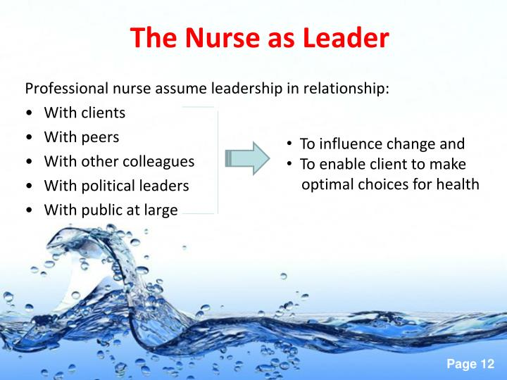 The Nurse as Leader