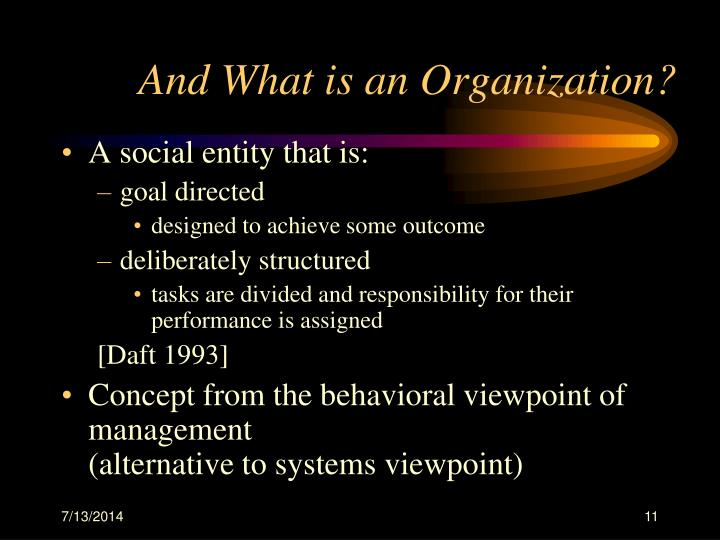And What is an Organization?