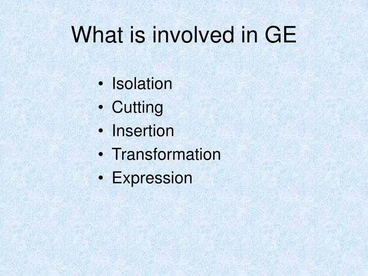 What is involved in GE