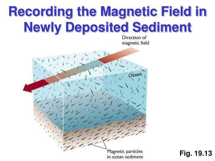 Recording the Magnetic Field in Newly Deposited Sediment