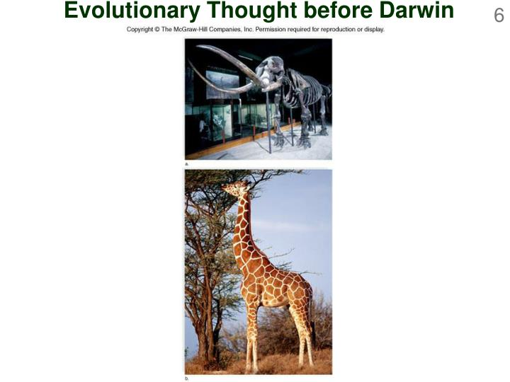 Evolutionary Thought before Darwin