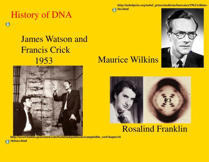 http://nobelprize.org/nobel_prizes/medicine/laureates/1962/wilkins-bio.html