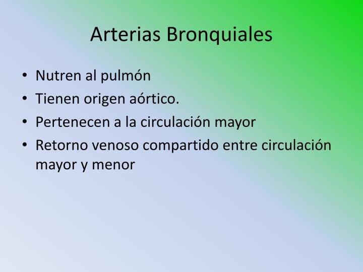 Arterias Bronquiales