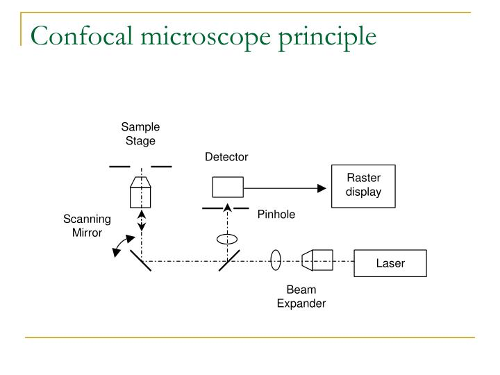 Confocal microscope principle